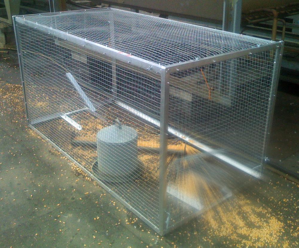 capture de pigeons anti pigeon dr me capture effarouchement fauconniers professionnels en. Black Bedroom Furniture Sets. Home Design Ideas
